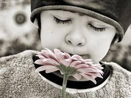 niño flor